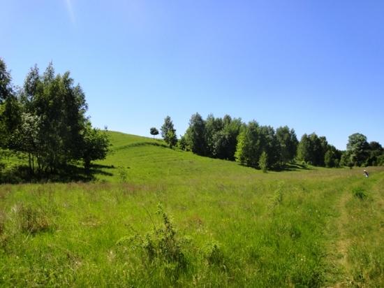 Продажа земельного участка Подгорцы